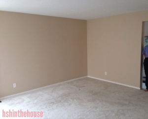 living room: white carpet and pink walls