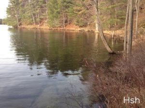 lakeshore at frontenac park